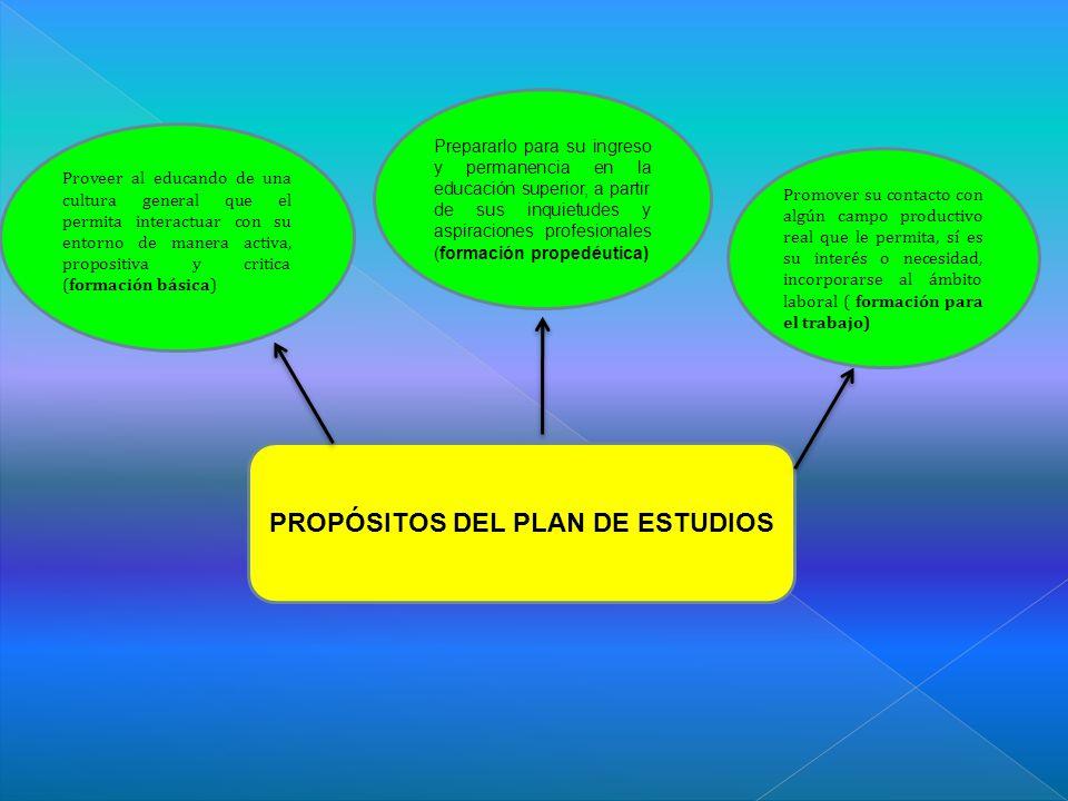 PROPÓSITOS DEL PLAN DE ESTUDIOS
