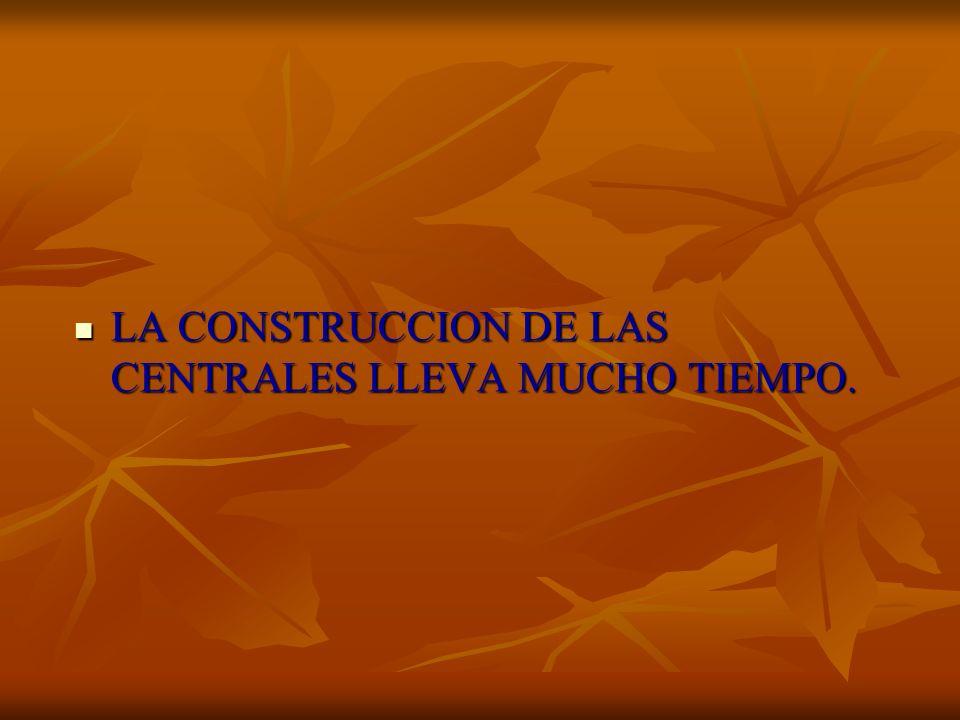 LA CONSTRUCCION DE LAS CENTRALES LLEVA MUCHO TIEMPO.