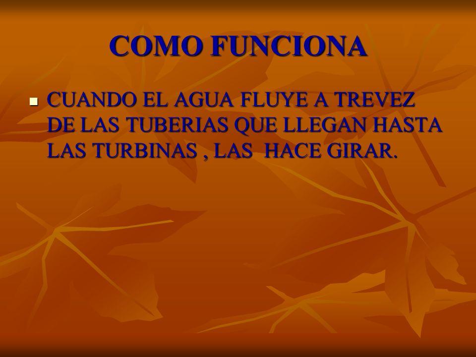 COMO FUNCIONACUANDO EL AGUA FLUYE A TREVEZ DE LAS TUBERIAS QUE LLEGAN HASTA LAS TURBINAS , LAS HACE GIRAR.