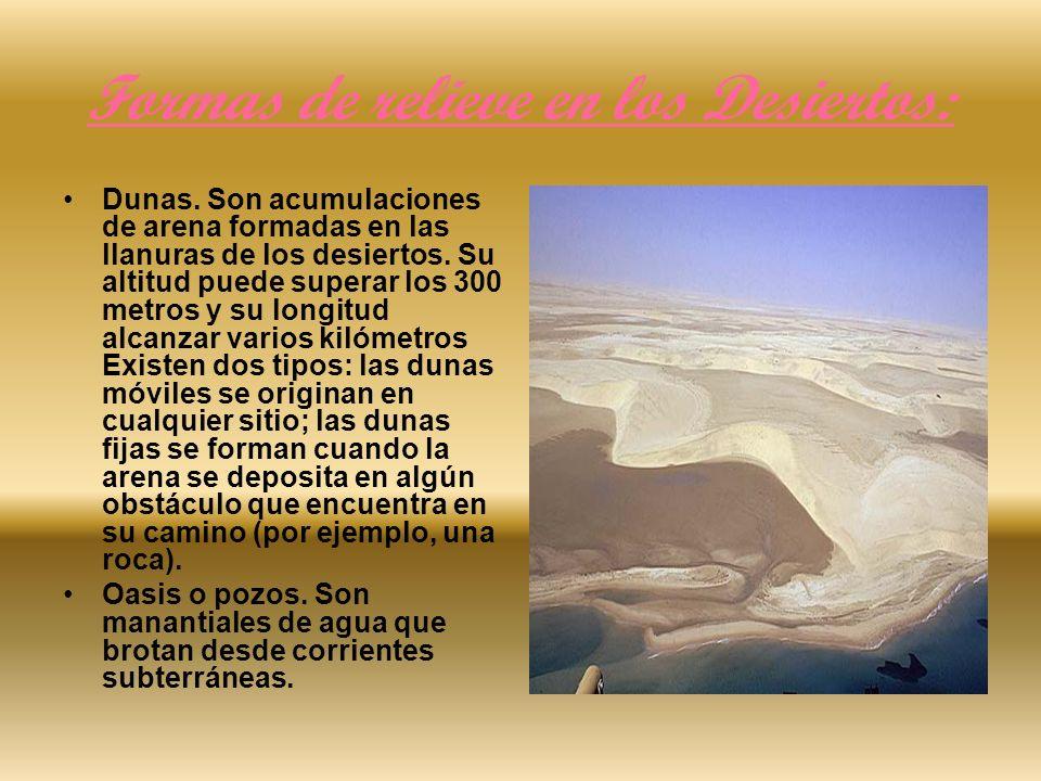 Formas de relieve en los Desiertos:
