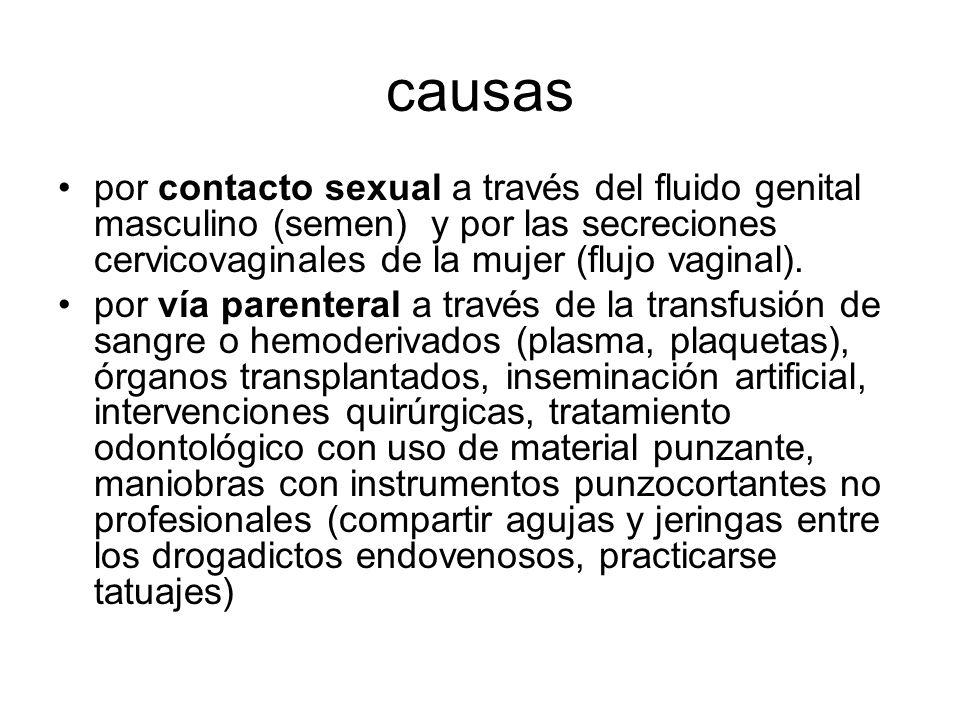 causas por contacto sexual a través del fluido genital masculino (semen) y por las secreciones cervicovaginales de la mujer (flujo vaginal).