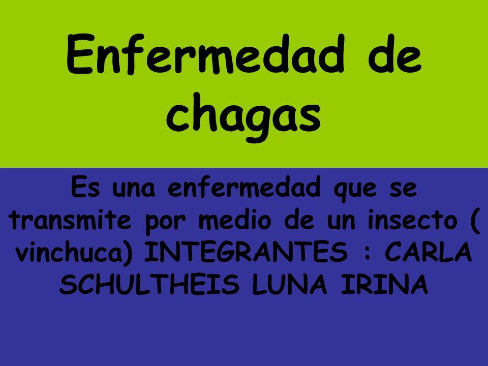 Enfermedad de chagas Es una enfermedad que se transmite por medio de un insecto ( vinchuca) INTEGRANTES : CARLA SCHULTHEIS LUNA IRINA.