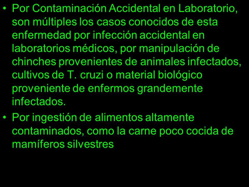 Por Contaminación Accidental en Laboratorio, son múltiples los casos conocidos de esta enfermedad por infección accidental en laboratorios médicos, por manipulación de chinches provenientes de animales infectados, cultivos de T. cruzi o material biológico proveniente de enfermos grandemente infectados.
