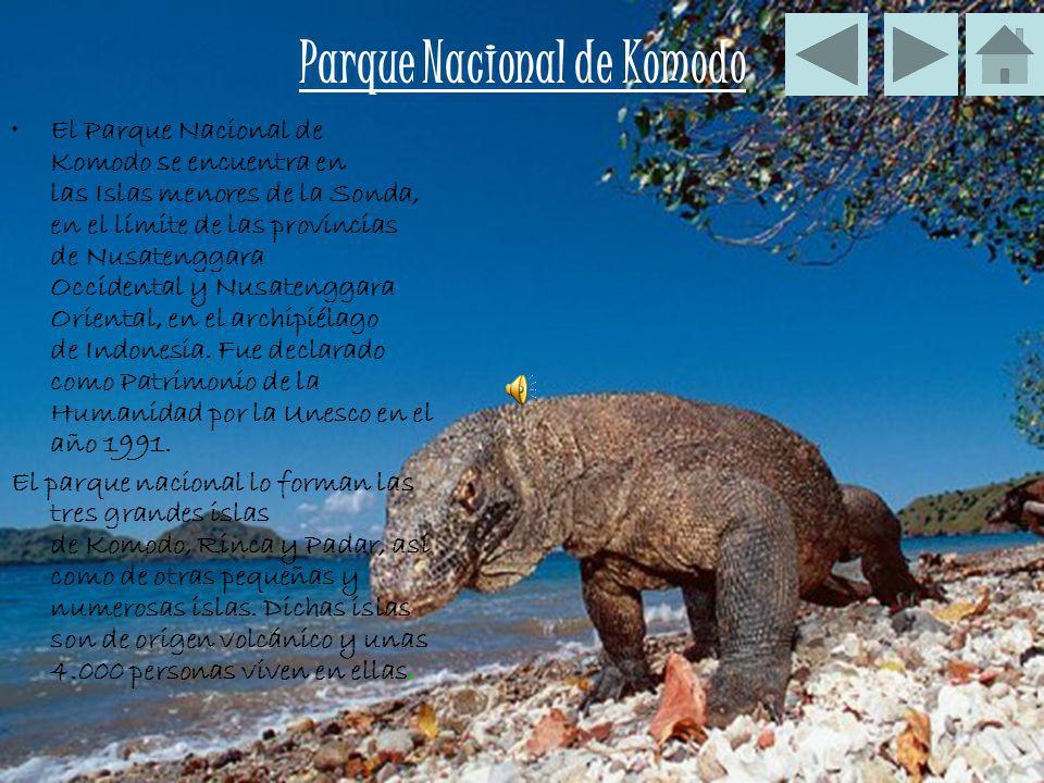 Parque Nacional de Komodo