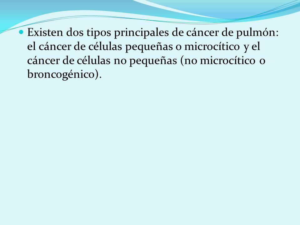 Existen dos tipos principales de cáncer de pulmón: el cáncer de células pequeñas o microcítico y el cáncer de células no pequeñas (no microcítico o broncogénico).