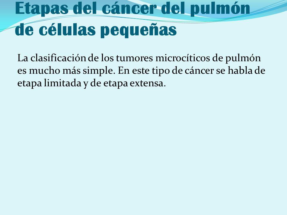 Etapas del cáncer del pulmón de células pequeñas