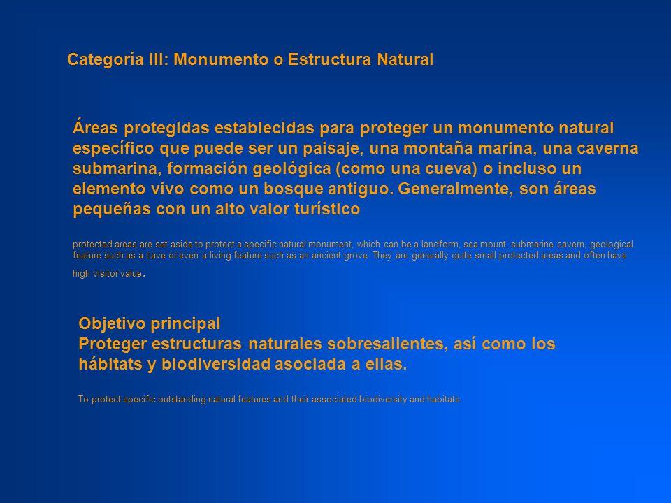 Categoría III: Monumento o Estructura Natural