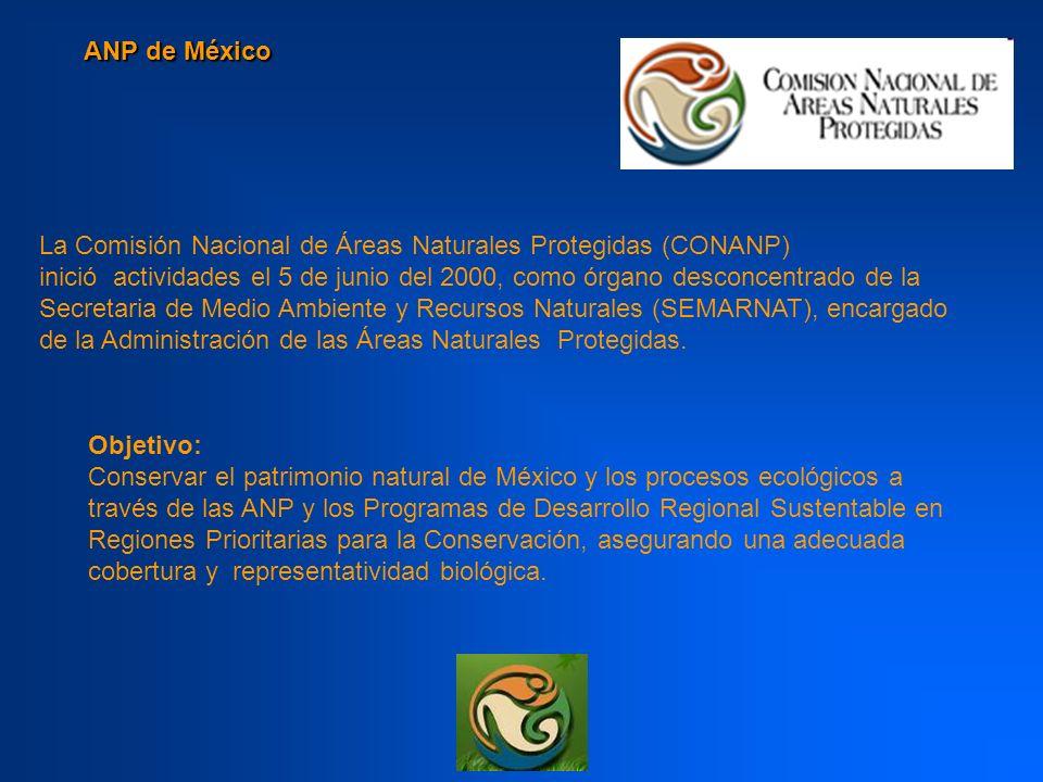 ANP de México