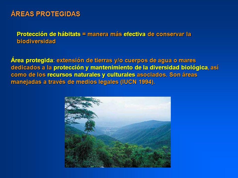 ÁREAS PROTEGIDAS Protección de hábitats = manera más efectiva de conservar la biodiversidad.