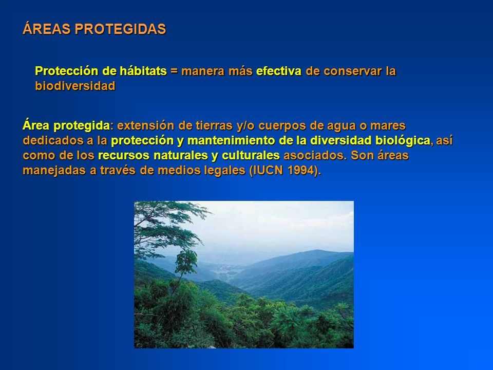 ÁREAS PROTEGIDASProtección de hábitats = manera más efectiva de conservar la biodiversidad.