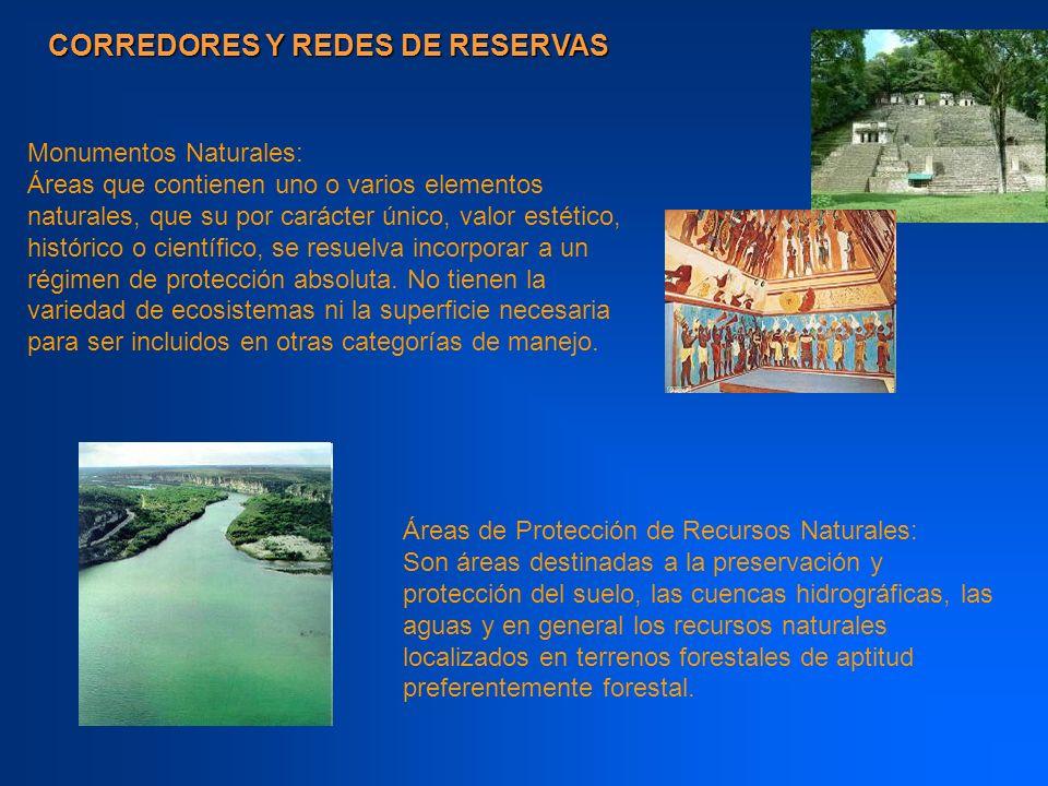 CORREDORES Y REDES DE RESERVAS