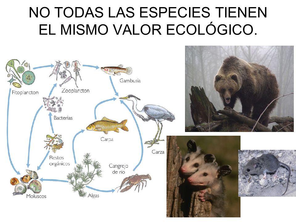 NO TODAS LAS ESPECIES TIENEN EL MISMO VALOR ECOLÓGICO.