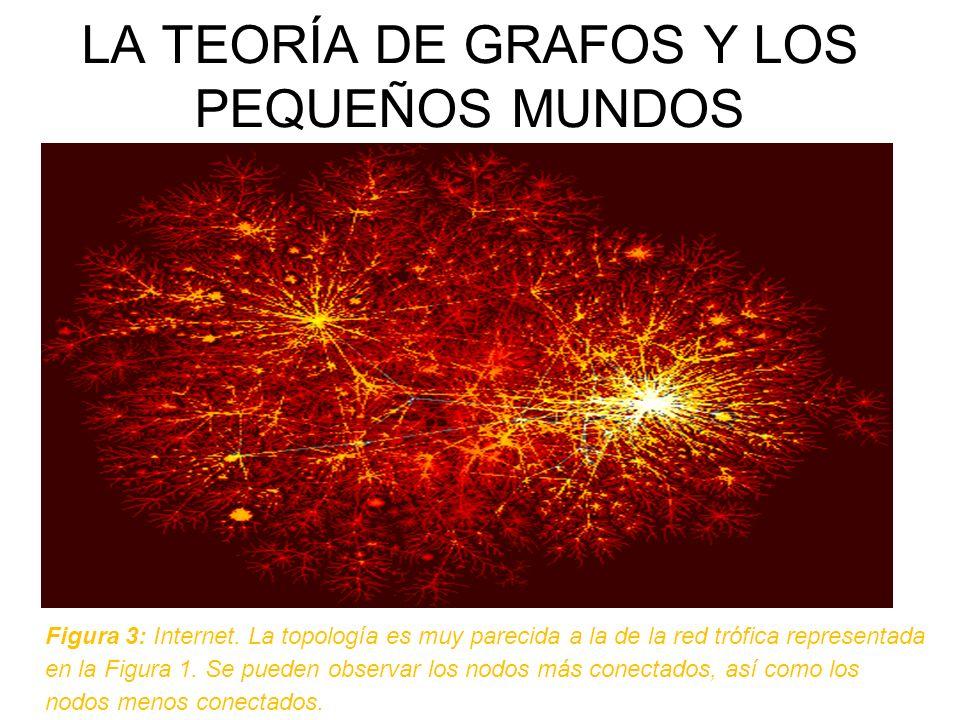 LA TEORÍA DE GRAFOS Y LOS PEQUEÑOS MUNDOS