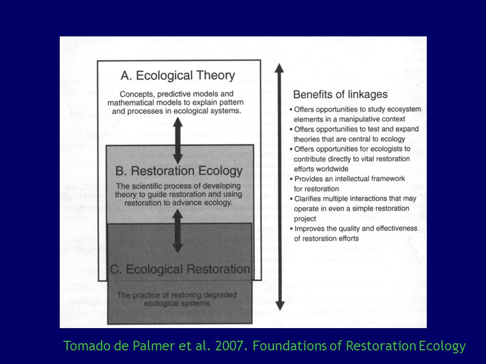 Tomado de Palmer et al. 2007. Foundations of Restoration Ecology