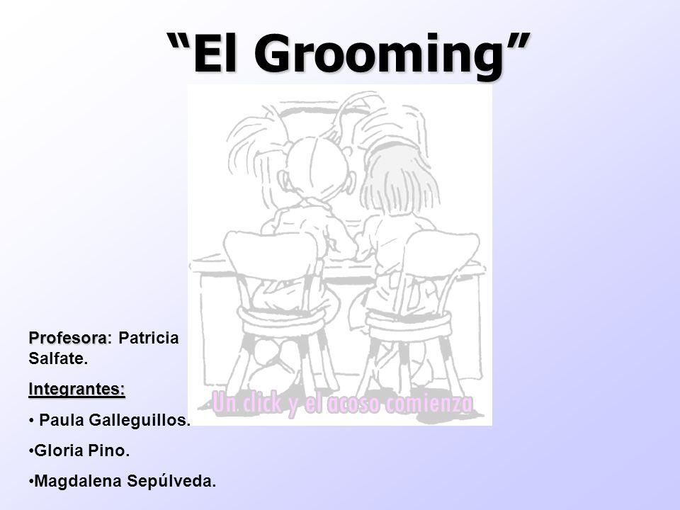El Grooming Profesora: Patricia Salfate. Integrantes:
