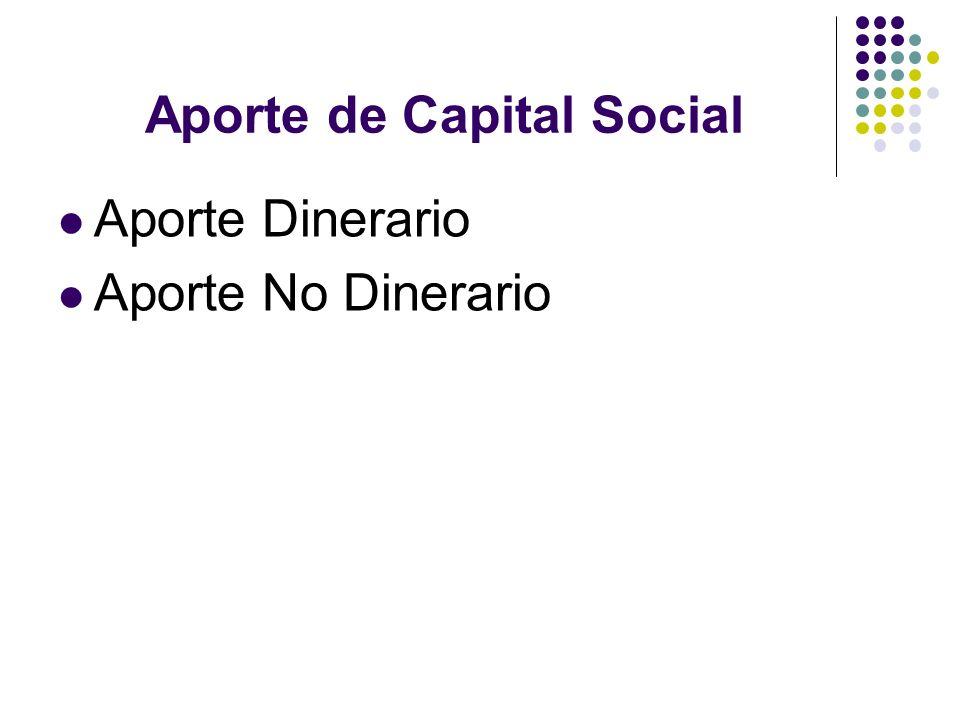 Aporte de Capital Social