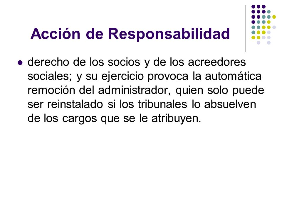 Acción de Responsabilidad