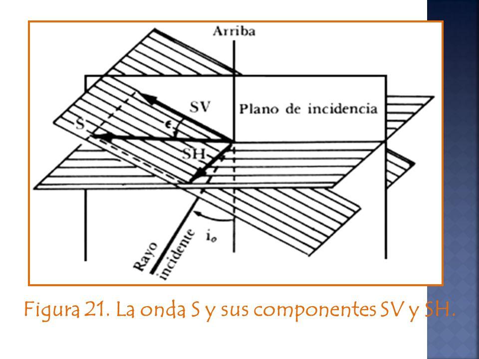 Figura 21. La onda S y sus componentes SV y SH.