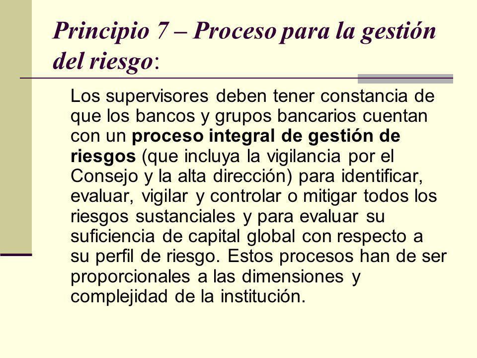 Principio 7 – Proceso para la gestión del riesgo: