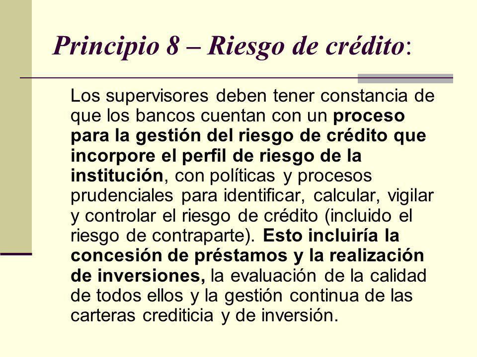 Principio 8 – Riesgo de crédito: