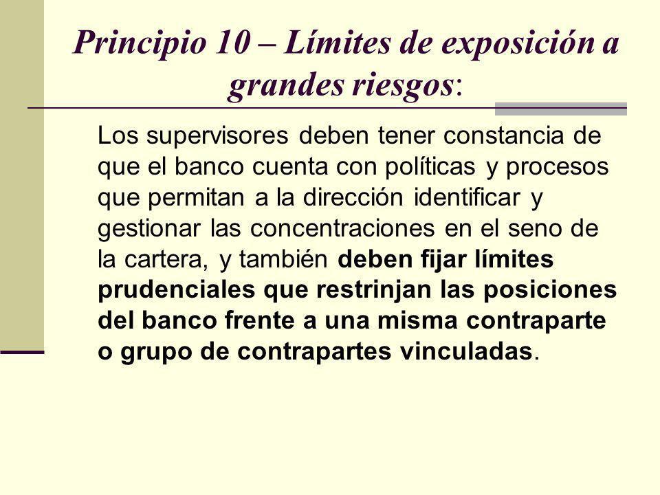 Principio 10 – Límites de exposición a grandes riesgos: