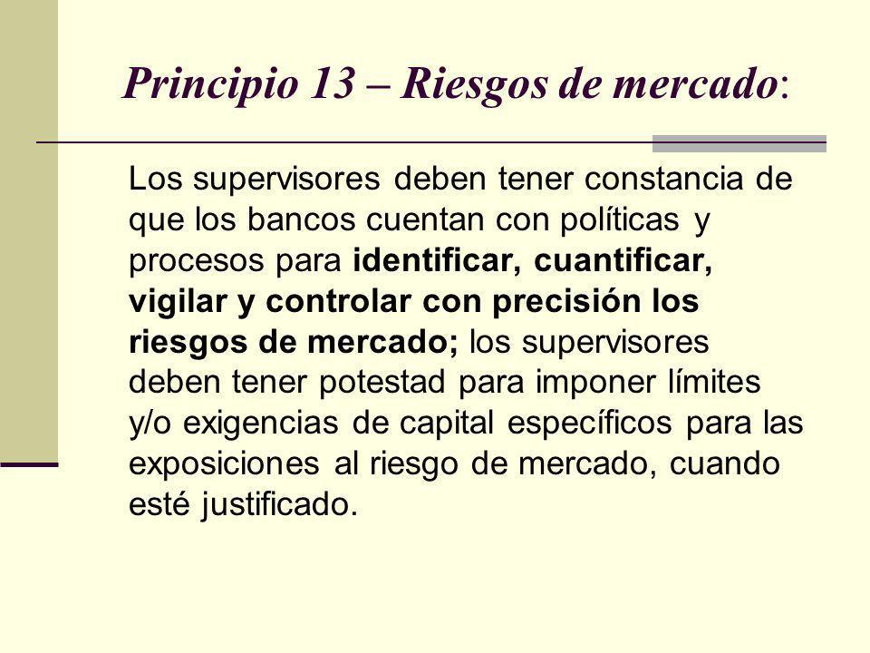 Principio 13 – Riesgos de mercado: