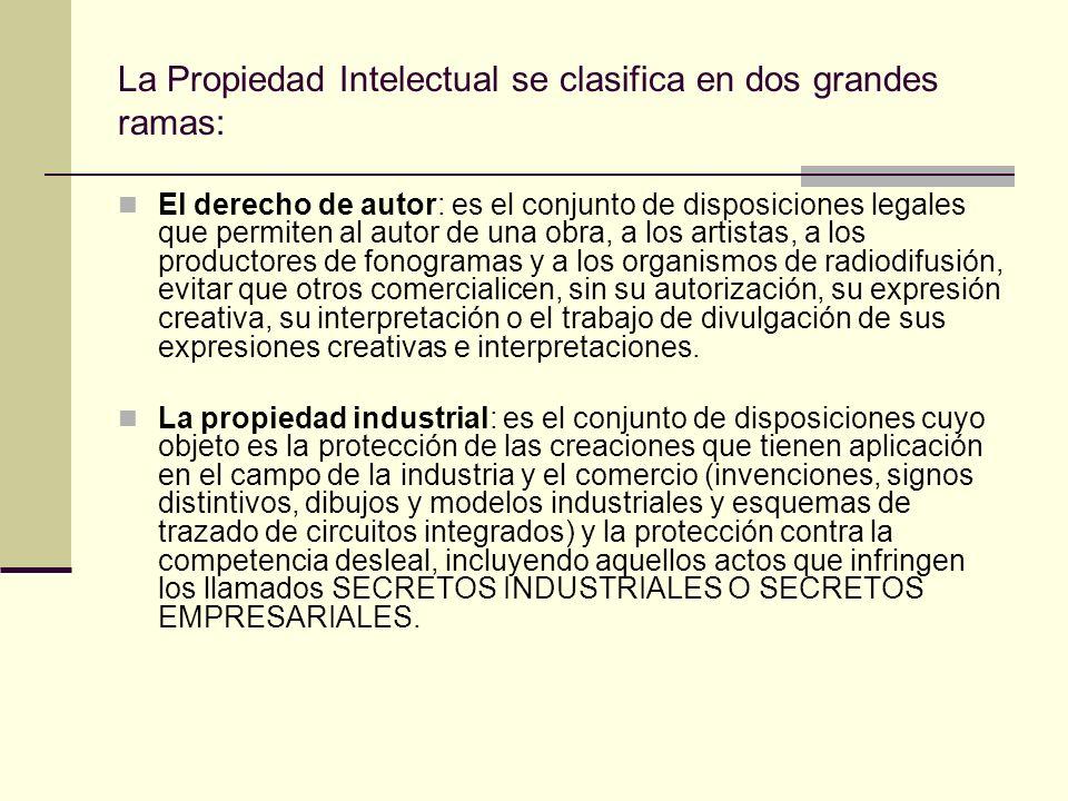 La Propiedad Intelectual se clasifica en dos grandes ramas: