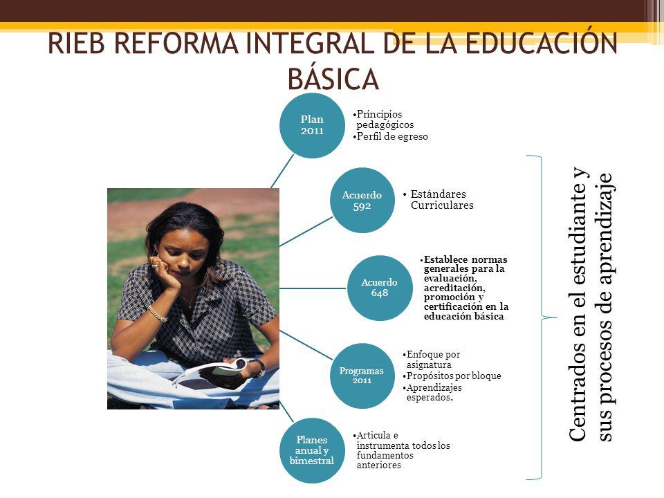 RIEB REFORMA INTEGRAL DE LA EDUCACIÓN BÁSICA