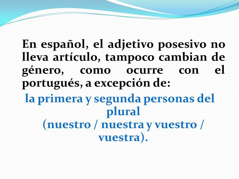 En español, el adjetivo posesivo no lleva artículo, tampoco cambian de género, como ocurre con el portugués, a excepción de: