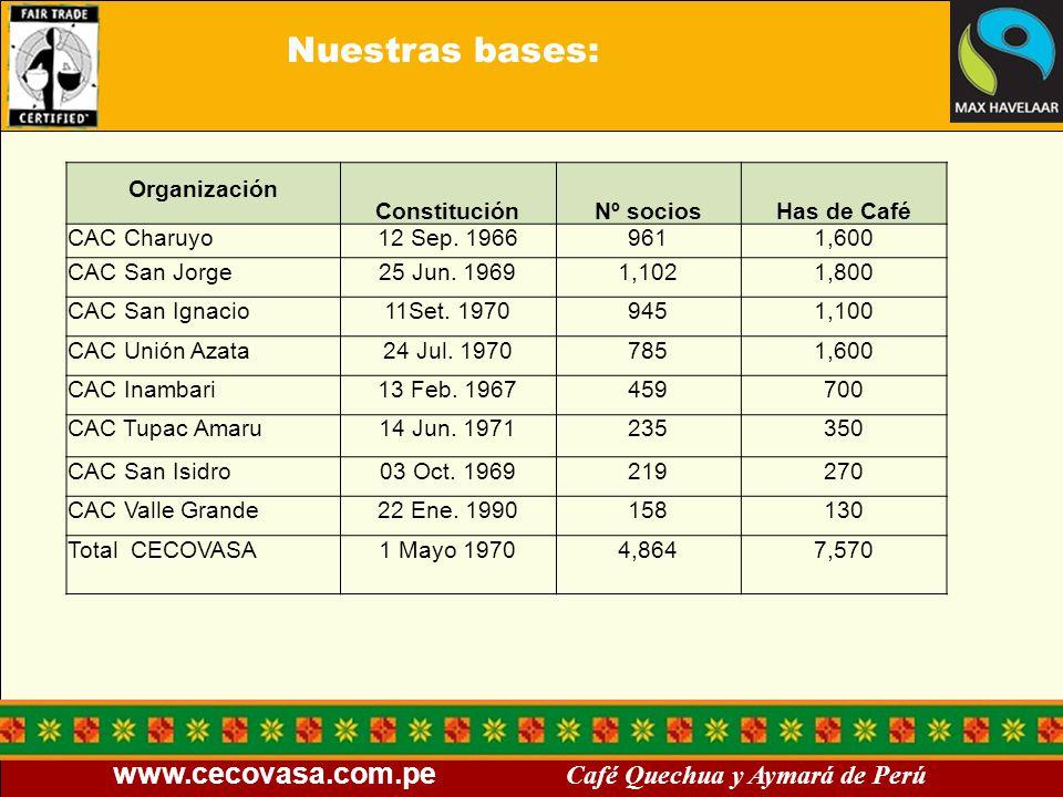 Nuestras bases: Organización Constitución Nº socios Has de Café