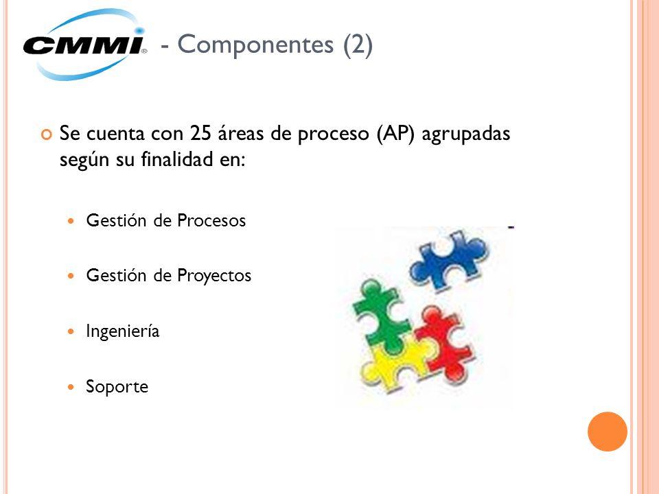 - Componentes (2) Se cuenta con 25 áreas de proceso (AP) agrupadas según su finalidad en: Gestión de Procesos.