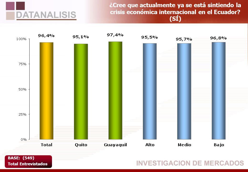 ¿Cree que actualmente ya se está sintiendo la crisis económica internacional en el Ecuador (SÍ)