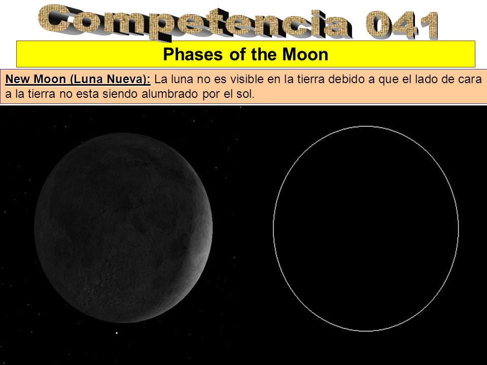 Competencia 041 Phases of the Moon