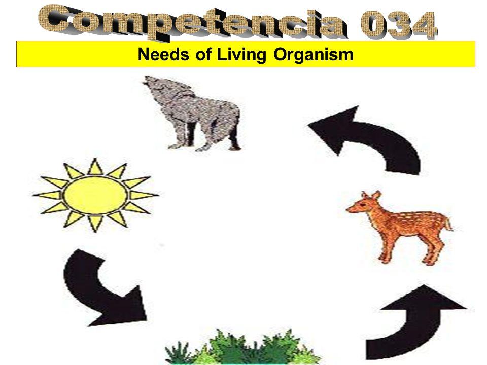 Needs of Living Organism