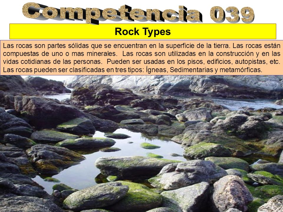 Competencia 039 Rock Types
