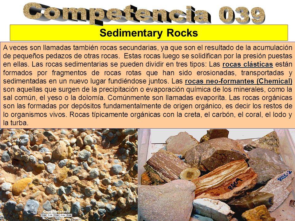 Competencia 039 Sedimentary Rocks