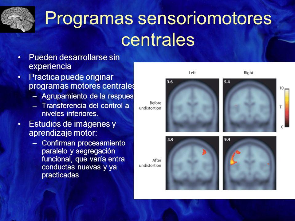 Programas sensoriomotores centrales