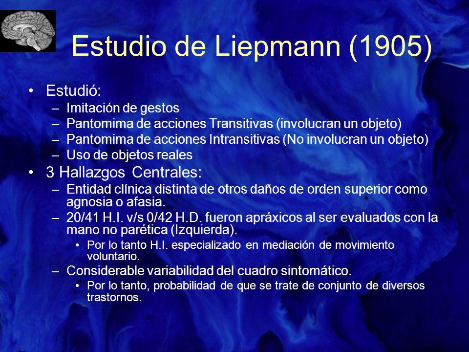 Estudio de Liepmann (1905) Estudió: 3 Hallazgos Centrales: