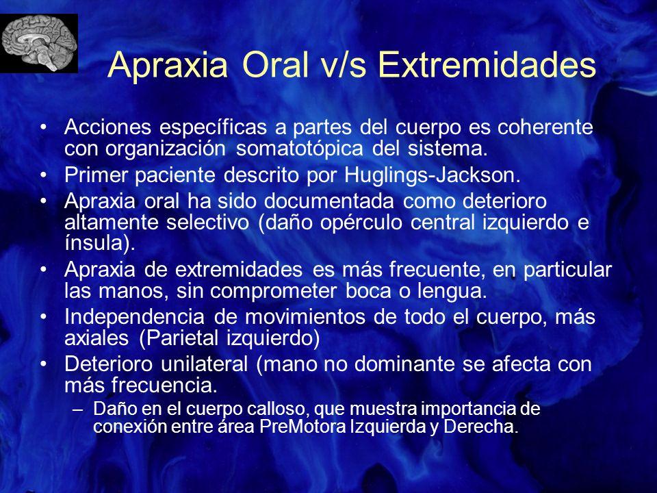 Apraxia Oral v/s Extremidades