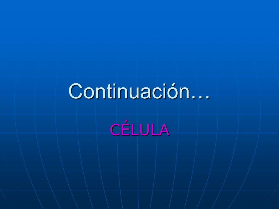 Continuación… CÉLULA