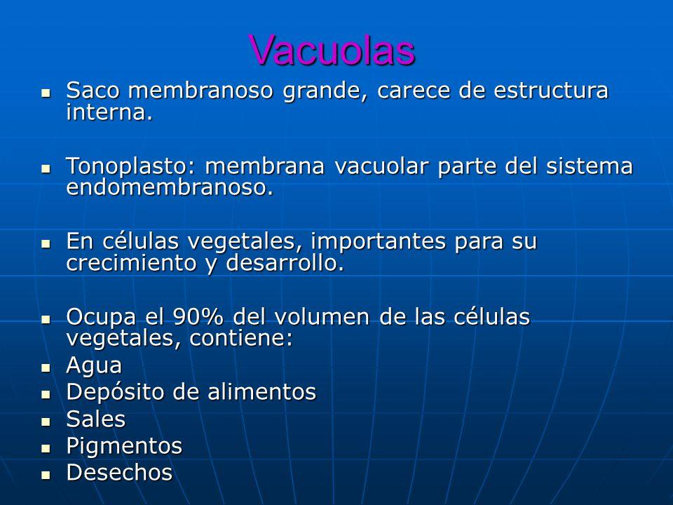 Vacuolas Saco membranoso grande, carece de estructura interna.