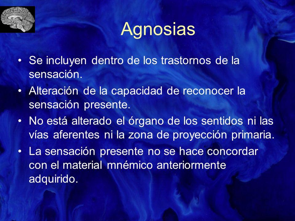 Agnosias Se incluyen dentro de los trastornos de la sensación.