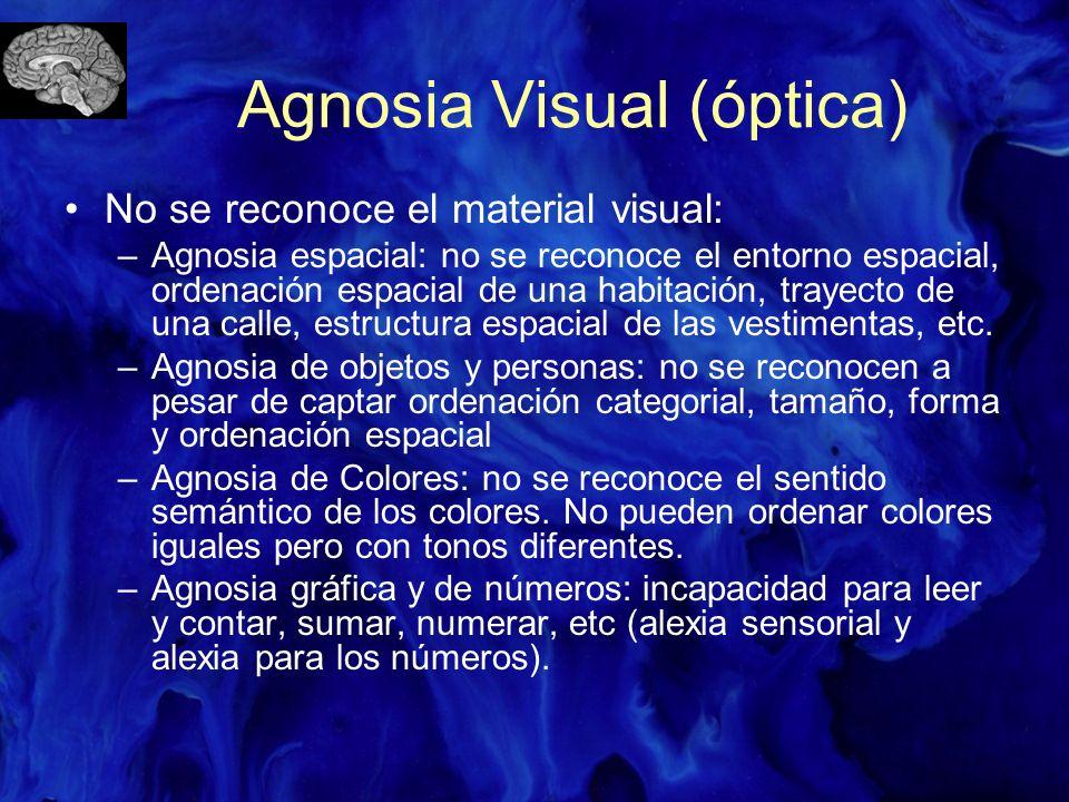 Agnosia Visual (óptica)