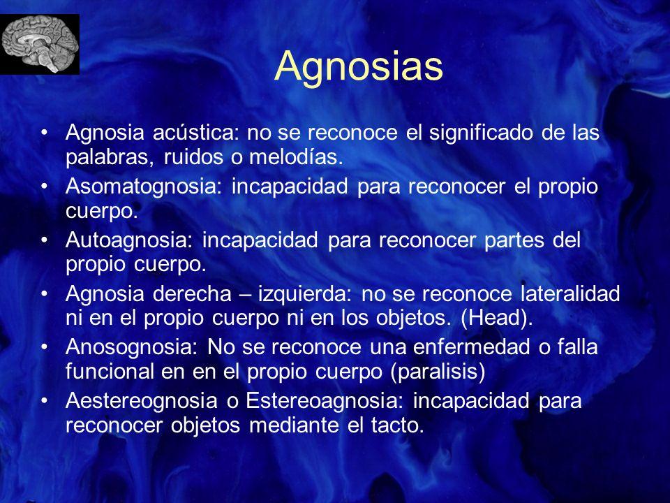 Agnosias Agnosia acústica: no se reconoce el significado de las palabras, ruidos o melodías.