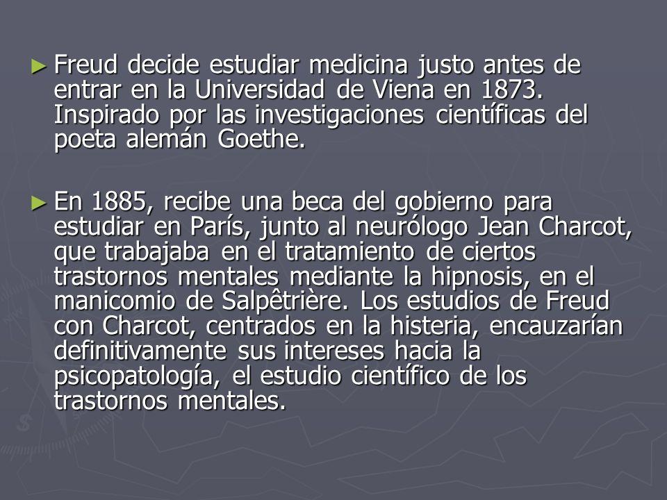 Freud decide estudiar medicina justo antes de entrar en la Universidad de Viena en 1873. Inspirado por las investigaciones científicas del poeta alemán Goethe.