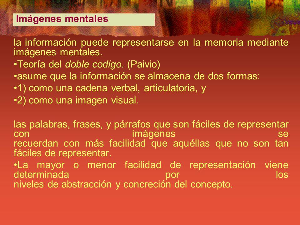 Imágenes mentales la información puede representarse en la memoria mediante imágenes mentales. Teoría del doble codigo. (Paivio)