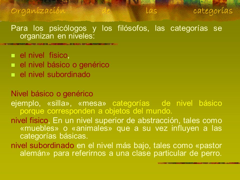 Organización de las categorías