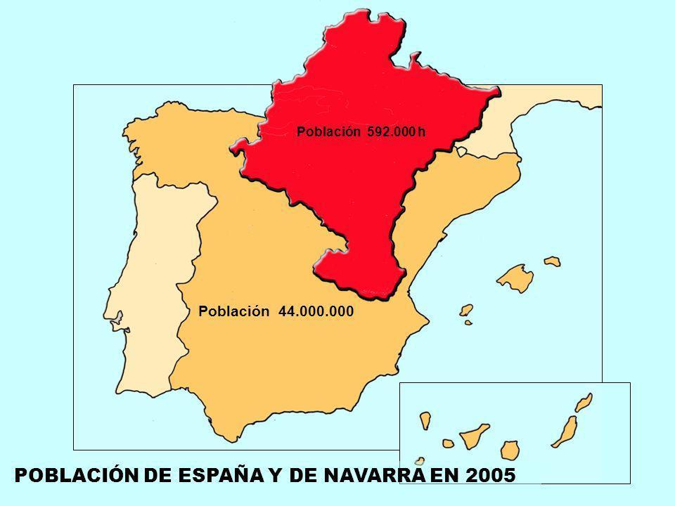POBLACIÓN DE ESPAÑA Y DE NAVARRA EN 2005