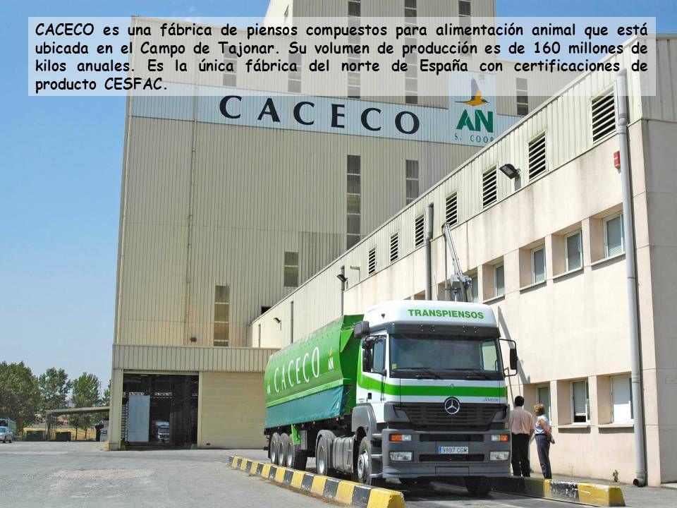 CACECO es una fábrica de piensos compuestos para alimentación animal que está ubicada en el Campo de Tajonar.