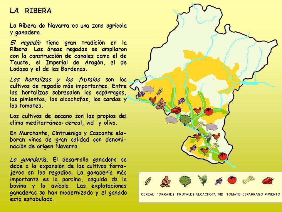 LA RIBERA La Ribera de Navarra es una zona agrícola y ganadera.
